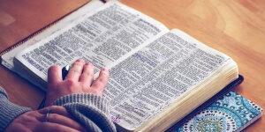 Jak wzbogacić zasób słownictwa podczas pisania?