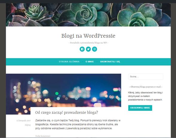 skonfigurowany blog WP