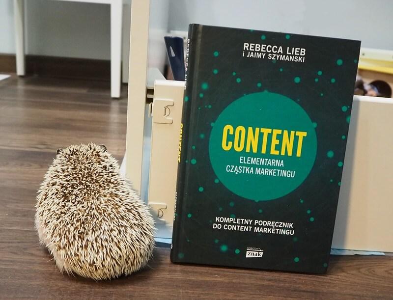 content elementarna czastka marketingu