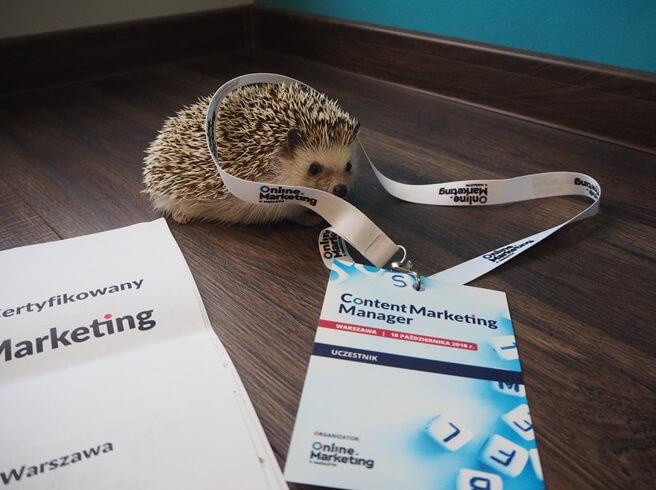 content marketing konferencja