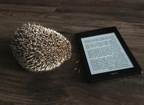 Biblia copywritingu recenzja